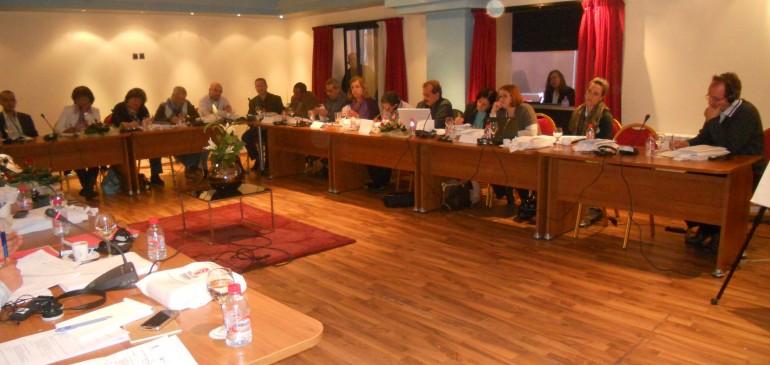 Le renforcement de la pérennité des organisations des Droits de l'Homme au Moyen-Orient et au Maghreb